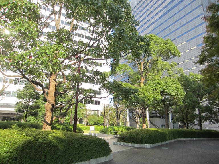 ビル間の緑道