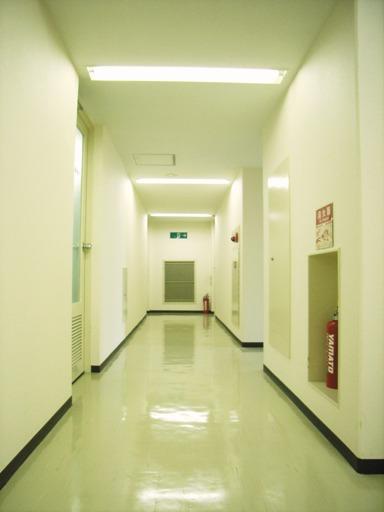 基準階共用廊下